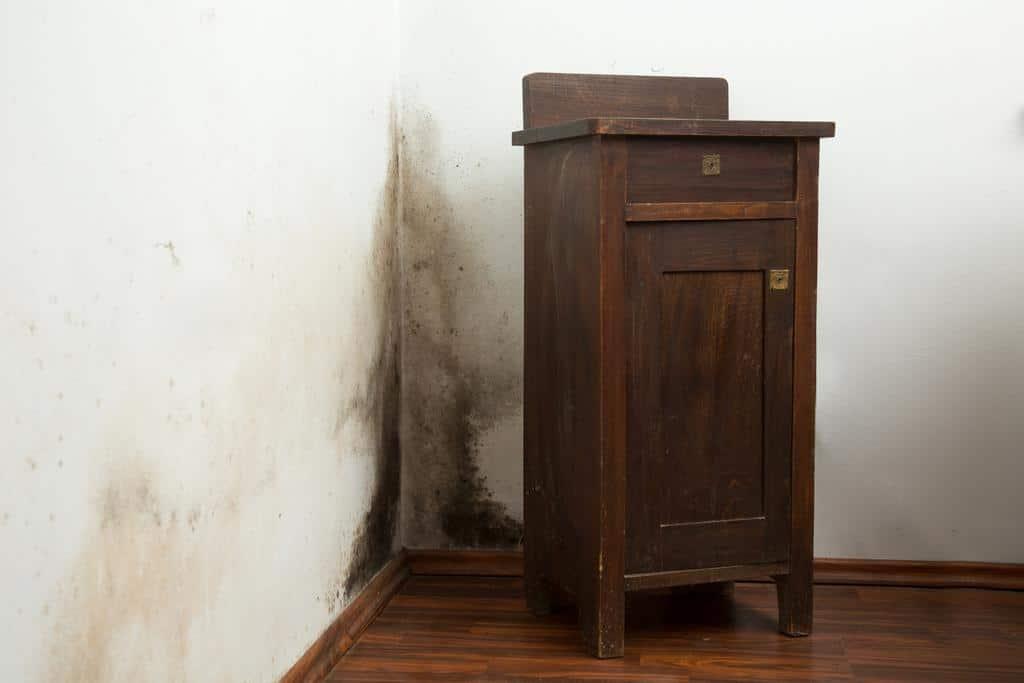 Comment enlever des traces de moisi sur un meuble ?