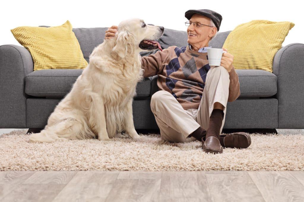 comment retirer des poils d 39 animaux sur un tapis sans aspirateur. Black Bedroom Furniture Sets. Home Design Ideas