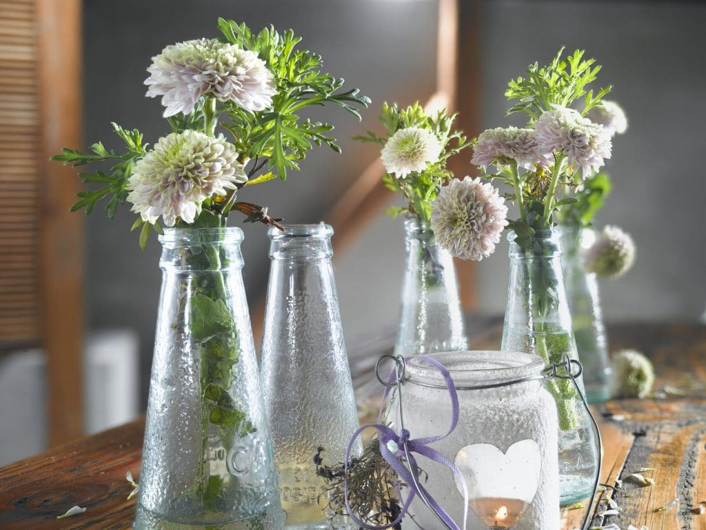 Comment nettoyer un vase troit ou une carafe en verre - Comment nettoyer une piece ...