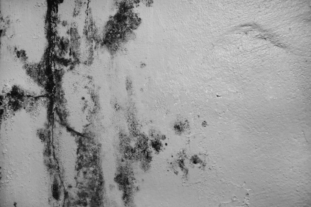 comment nettoyer des traces de moisissures sur un mur peint. Black Bedroom Furniture Sets. Home Design Ideas