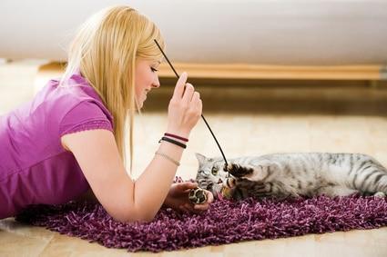 comment supprimer une mauvaise odeur sur un tapis ou une moquette. Black Bedroom Furniture Sets. Home Design Ideas